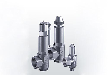 Goetze Safety Valves Series 451